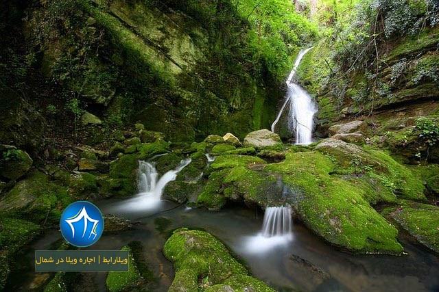 شیرآباد کجاست-شیرآباد گرگان-شیرآباد گلستان-جنگل شیرآباد گلستان