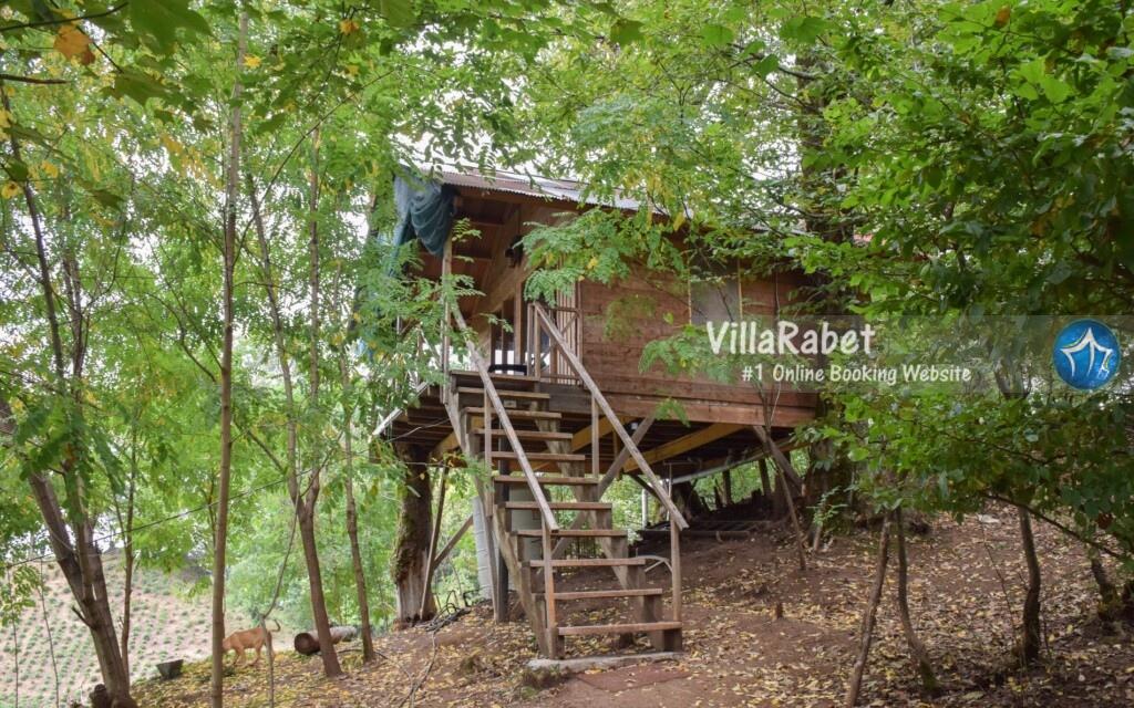 اجاره کلبه، اجاره کلبه در شمال، اجاره کلبه در جنگل، اجاره کلبه در ساحل، رزرو کلبه، کلبه چوبی، کلبه جنگلی، کلبه ساحلی