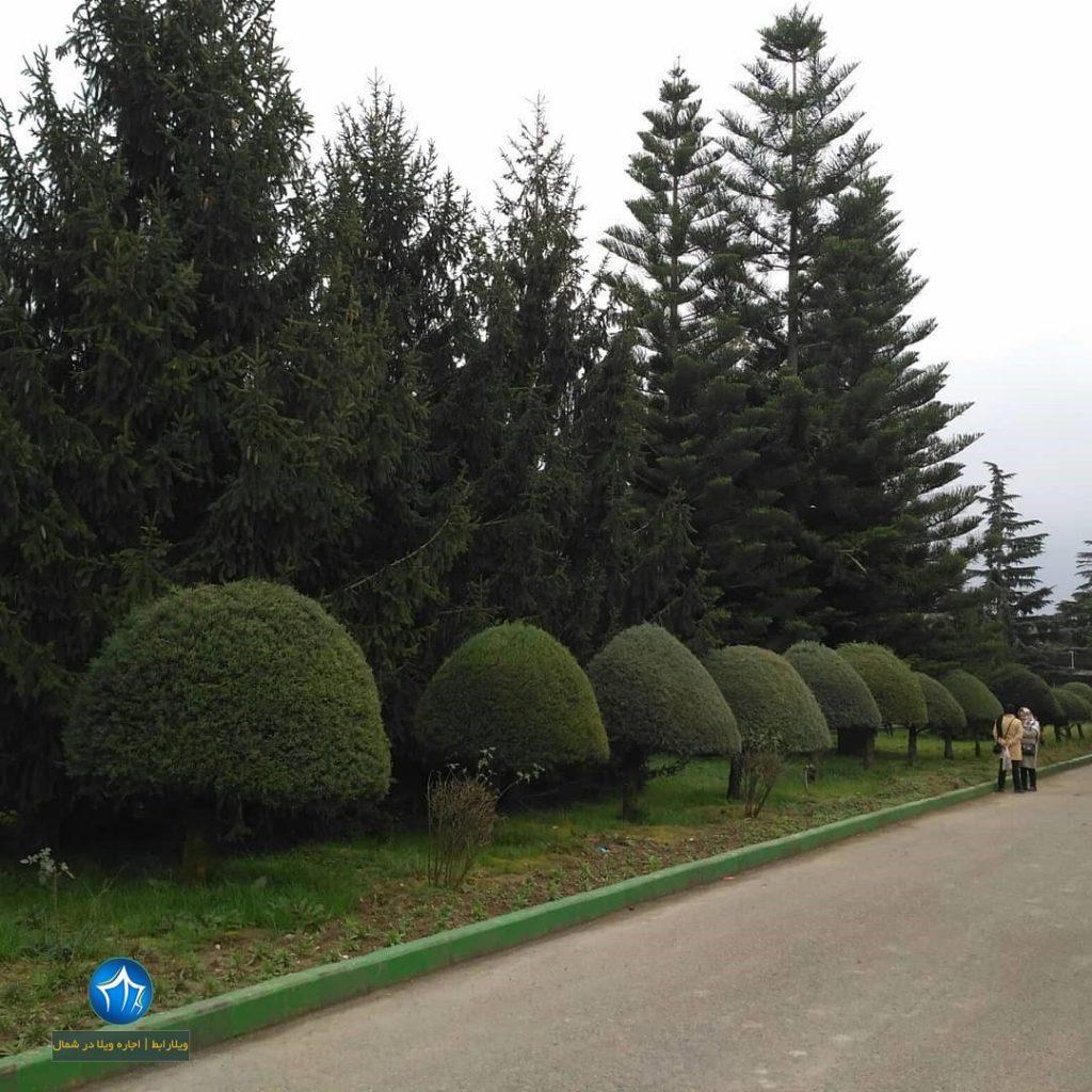 اغ گیاهشانسی نوشهر باغ گیاهشانی جاذبه دیدنی نوشهر ادرس باغ گیاهشانسی