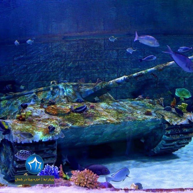 بندر انزلی، استان گیلان، ویلارابط، اجارهی ویلا در انزلی، تورهای گردشگری یک روزه - آکواریوم انزلی اکواریوم ماهی بندر ازنلی (۳)