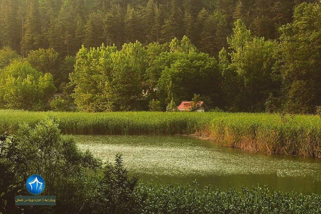 تالاب سیاهرود آشنایی با تالاب سیاهرود رودبار ، مکانی تفریحی در استان گیلان سیاه رود ردوبار تالاب گیلان ویلارابط (۵)