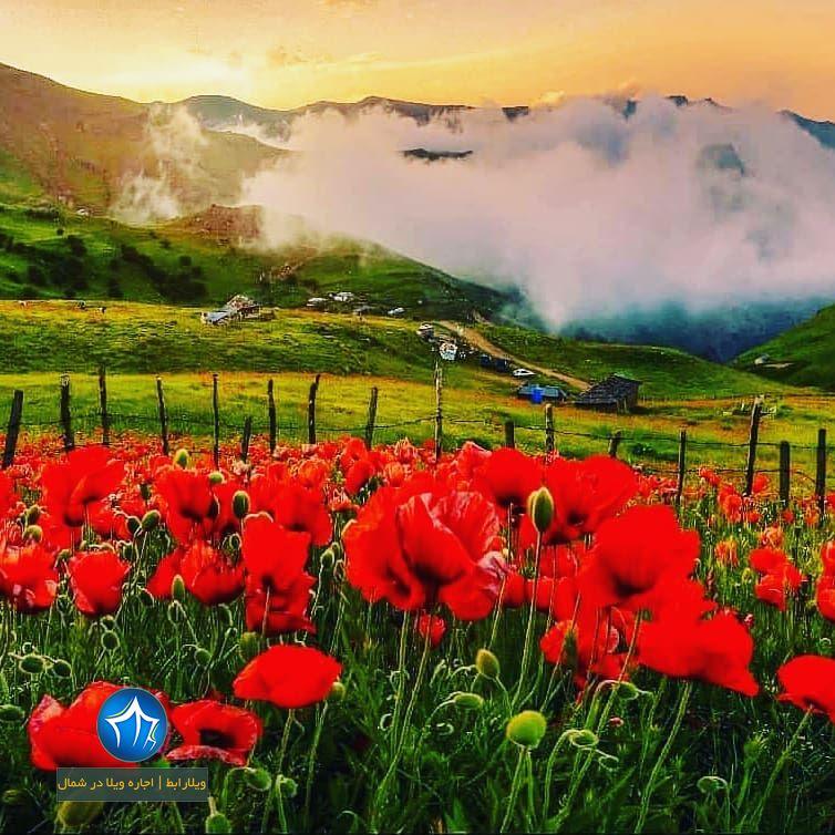 تالش، استان گیلان، جاذبههای گردوباتان، تورهای گردشگلاقی سوباتان تالش کجاست (۱)