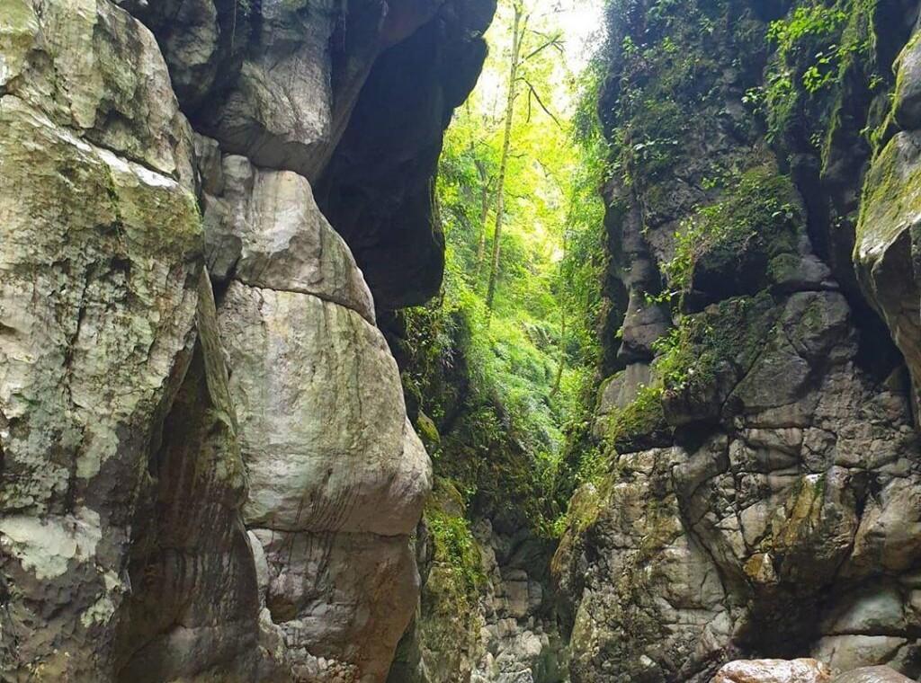 تنگه-دار-کجاست-تور-تنگه-دار-نوشهر-عکس-تنگه-دار-تور-یکروزه-تنگه-دار-نوشهر-صخره-کوه-4-1024x1024