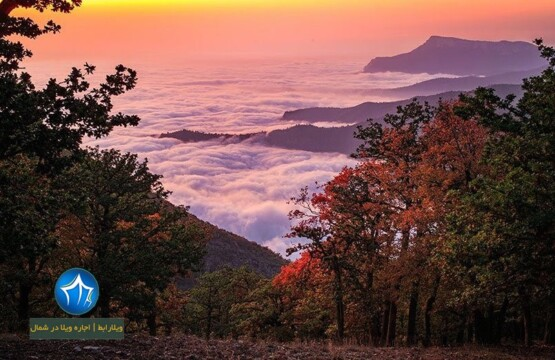 جنگل ابر کجاست-جنگل ابر گرگان-جنگل ابر شاهرود در تابستان-جنگل ابر در زمستان-جنگل ابر شاهرود کجاست-جنگل ابر گلستان۱