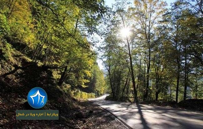 عکس پارک جنگلی خشکه داران کجاست؟ آشنایی با خشکه داران جاذبه گردشگری مازندران (۱)