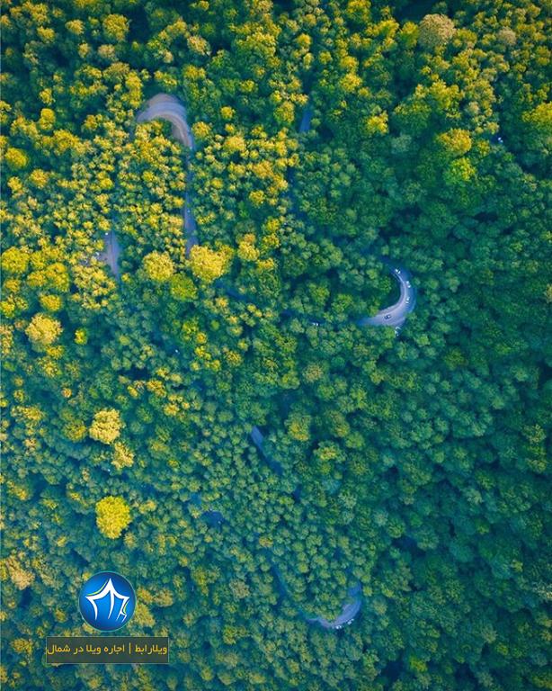 دالخانی دالان بهشت عروس ایران رامسر جنگل پارک شمال اجاره ویلا تنکابن (۴)