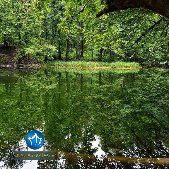 دریاچه فراخین نوشهر دریاچه فراخین کجاست دریاچه فراخین کجور تالاب فراخین (۵)