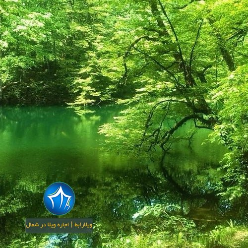 دریاچه فراخین نوشهر دریاچه فراخین کجاست دریاچه فراخین کجور تالاب فراخین (۴)