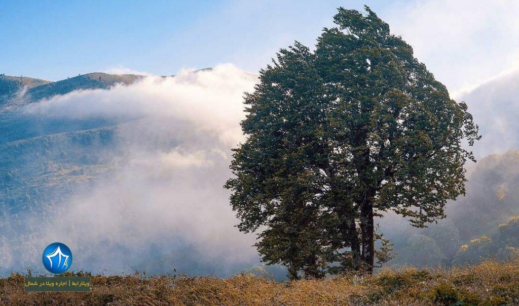 دهکده ییلاقی ورزشی سالانسر رودبار ( دهکده ییلاقی ورزشی سالانسر رودبار در ارتفاع ۱۲۵۰ متری) (۳)