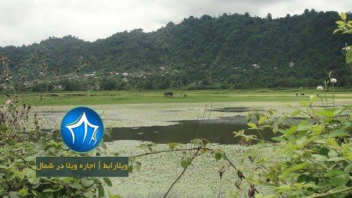 روستای ملاط لنگرود-روستای ملاط در شهرستان لنگرود استخر ملاط لنگرود۲