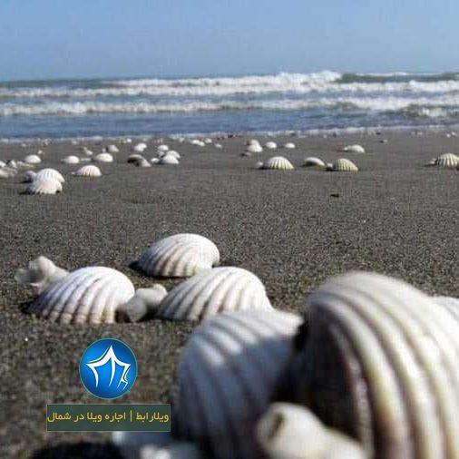 ساحل صدف آستارا یکی از ساحل های زیبای دریای خزر (۲)