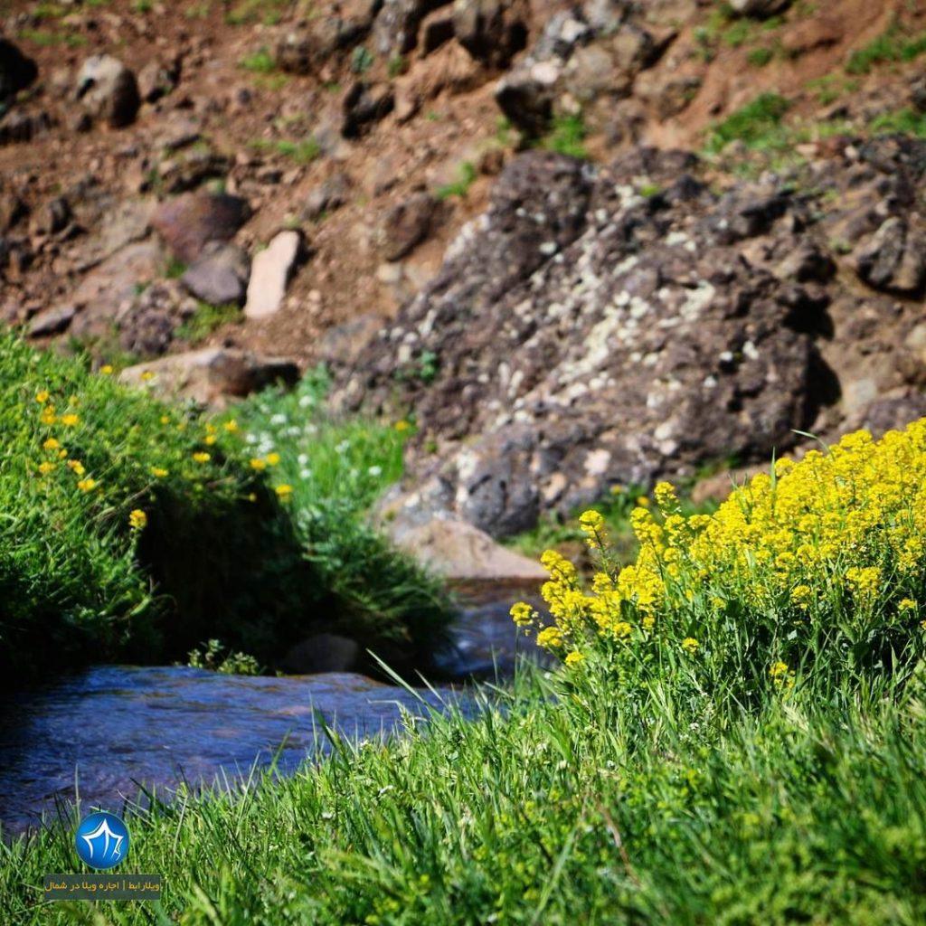 سایت ویلا رابط-اجاره ویلا-تور یک روزه گردشگری چشمه آب معدنی لوزان املش (۱)