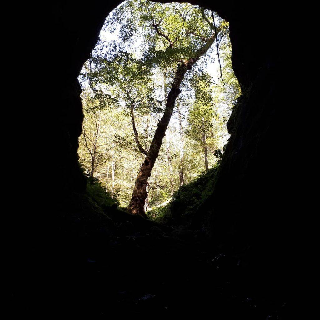غار آویشو کجاست؟ یکی از بزرگترین غارهای استان گیلان غار آویشو