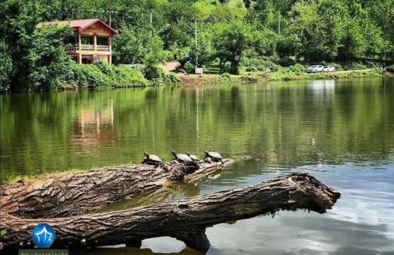 محوطه های باستانی حلیمه جان رودبار کجاست؟ محوطه های باستانی حلیمه جان رودبار دریاچه عروس تالاب عروس رودبار (۱)
