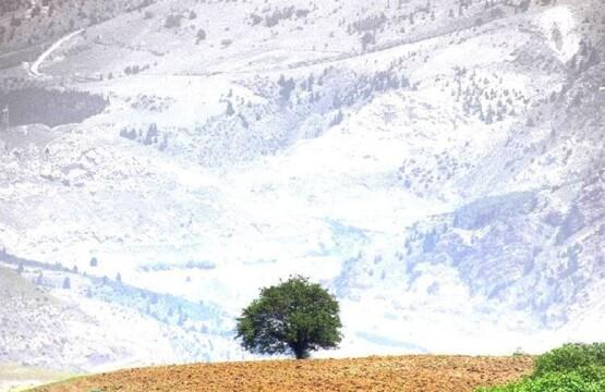 محوطه های باستانی فیلده رودبار در استان گیلان محوطه های باستانی فیلده رودبار۲
