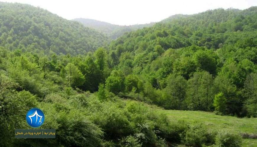 منطقه حفاظت شده چلچلی -منطقه حفاظت شده چل چلی-منطقه چلچلی-منطقه چلچلی گرگان۲