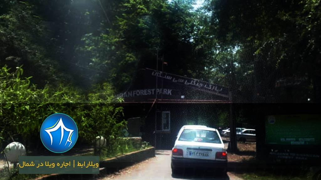 وردی-پارک-جنگلی-سیسنگان-نوشهر