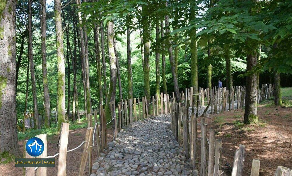 پارک جنگلی بی بی یانلو از جاذبه های گردشگری آستارا (۳)