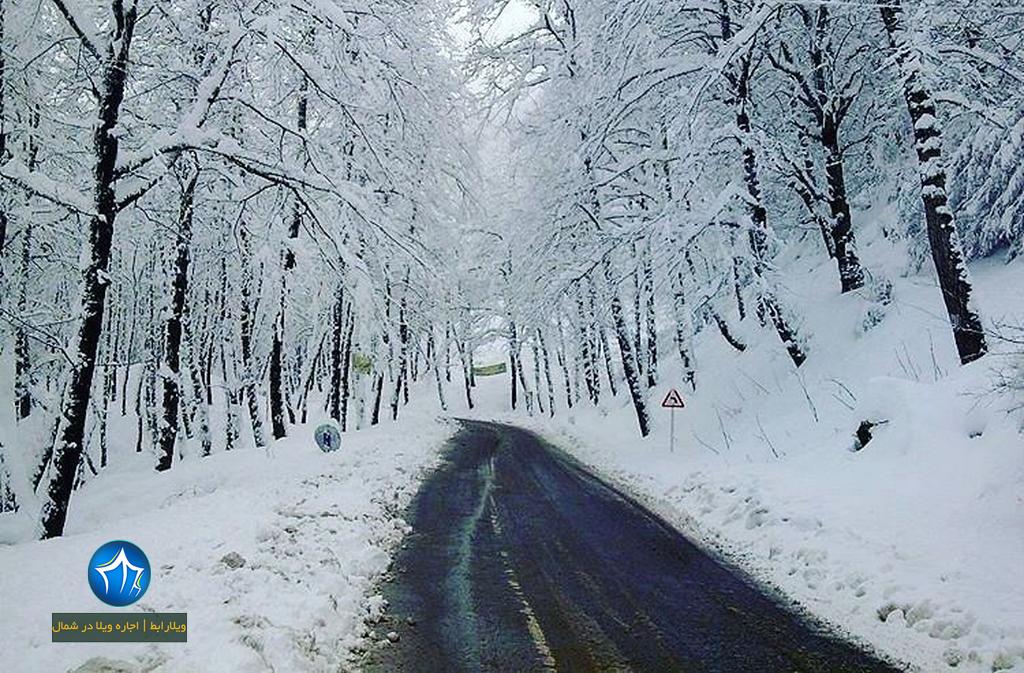 پارک جنگلی دالخانی رامسر (۴) زمستان جنگل دالخانی