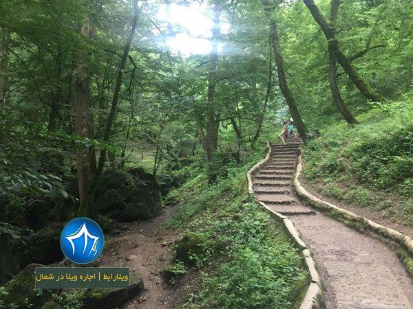 پارک جنگلی ماسوله کجاست -پارک جنگلی در ماسوله - آدرس پارک جنگلی ماسوله - مسیر پارک جنگلی ماسوله