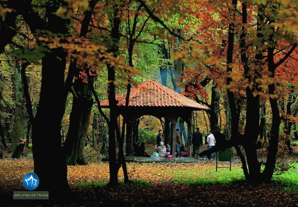 پارک جنگلی ناهارخوران گرگان-پارک جنگلی ناهارخوران در کدام شهر است-پارک جنگلیل ناهارخوران کجاست (۱)