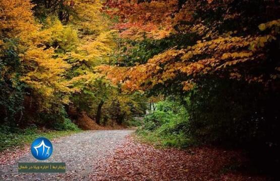 پارک جنگلی ناهارخوران گرگان-پارک جنگلی ناهارخوران در کدام شهر است-پارک جنگلیل ناهارخوران کجاست (۲)