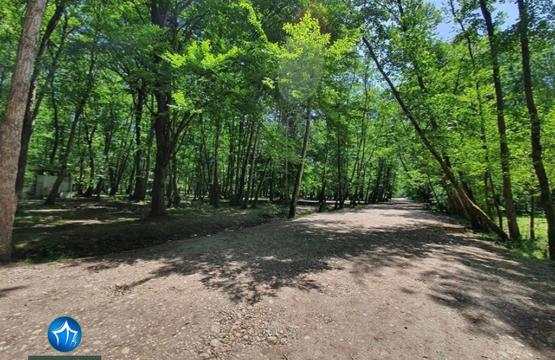 پارک جنگلی نور اجاره ویلا در نور اقامت در پارک جنگلی نور استان مازندران (۵)