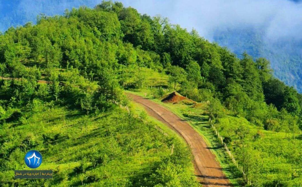 پارک جنگلی هلو دشت سایت ویلا رابط-اجاره ویلا-تور یک روزه گردشگری (۲)