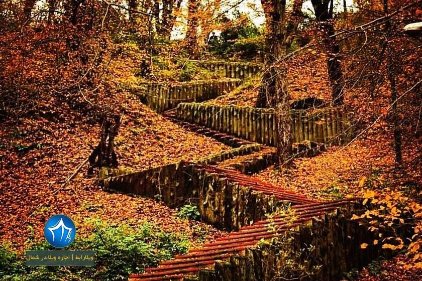 پارک جنگلی کشپل کجاست؟ پارک کشپل پارک جنگلی کشپل مازندران تور یکروزه پارک جنگلی کشپل اقامت در کشپل نور اجاره ویلا در کشپل نور (۳)