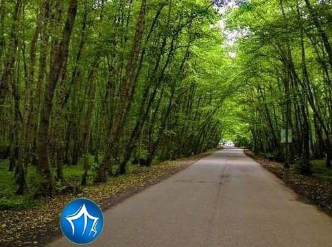 پارک جنگلی گیسوم تالش تالش، استان گیلان، ویلارابط، اجارهی ویلا در تالش، تورهای گردشگری یک روزه
