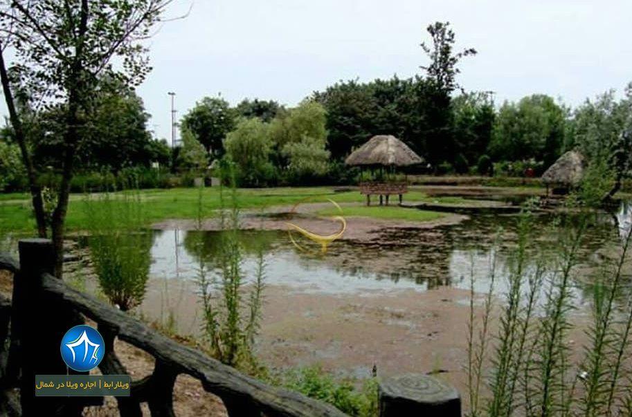 پارک ملت رشت گیلان- پارک ملت رشت کجاست- پارک ملت در رشت-آدرس پارک ملت رشت-بوستان ملت رشت (۲)