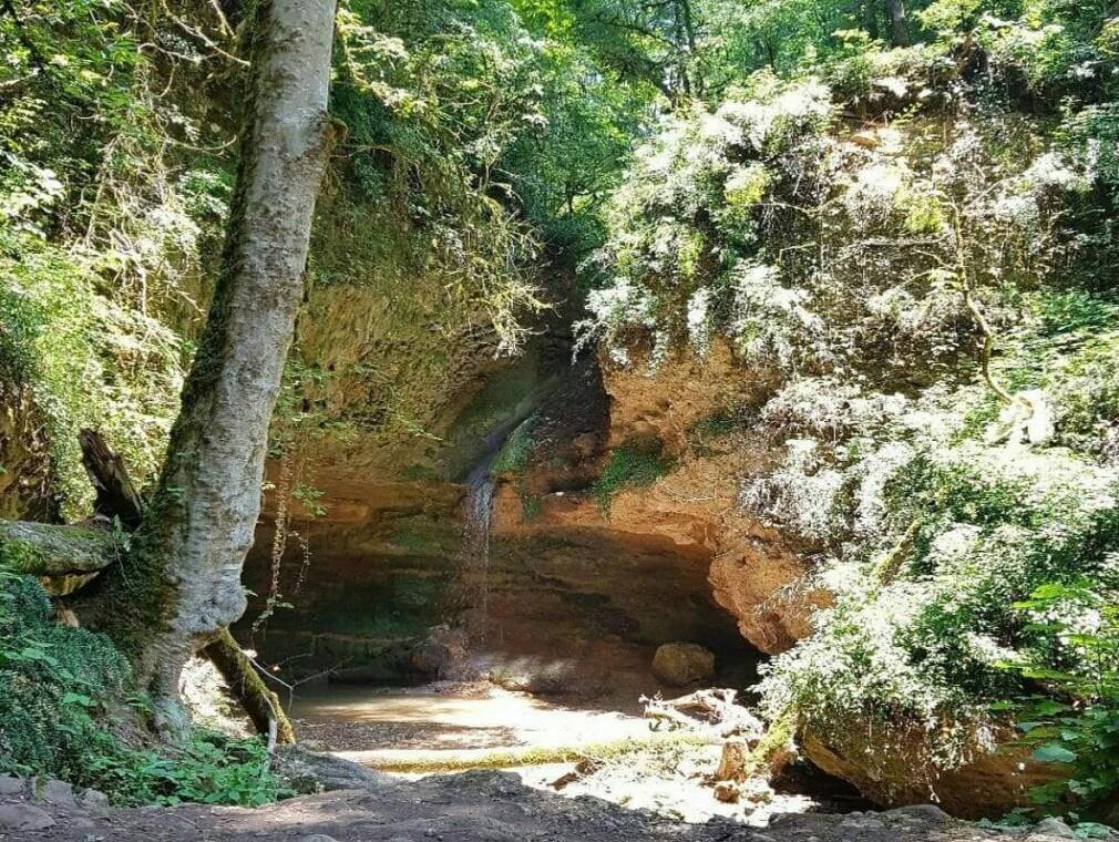 پلنگدره-آبشار-پلنگ-دره-تور-ابشار-پلنگدره-شیرگاه-جنگل-پلنگ-دره-کجاست-)-(۲)