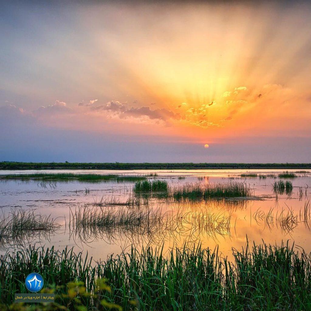 چشم انداز و جاذبه های اطراف رودخانه سفید رود رودبار کجاست ؟ (۲)