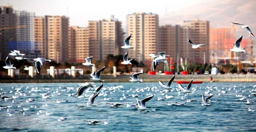 دریاچه چیتگر کجاست-دریاچه چیتگر در شب-دریاچه چیتگر تهران-قیمت تفریحات دریاچه چیتگر-آدرس دریاچه چیتگر-