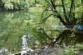 جاده معدن نوشهر جاده فراخین نوشهر جاده آبشار دارنو جاده معدن نوشهر کجاست عکس جاده معدن جنگل جاده معدن نوشهر (1)